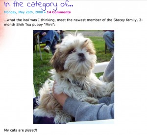 Screenshot of picture of baby Mini on my blog
